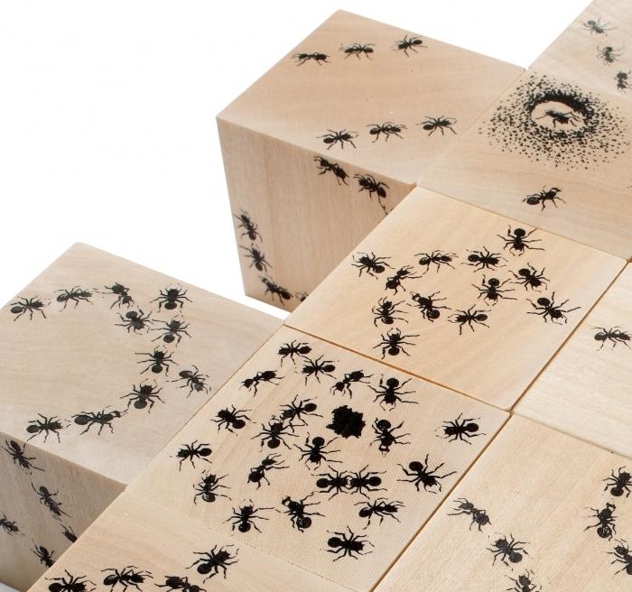 cubes-bois-fabrication-artisanale-fourmi