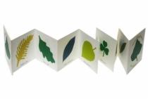coffre-cadeau-memory-des-feuilles
