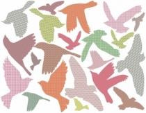 sticker-oiseaux-couleur-artforkids-rose-vert-marron