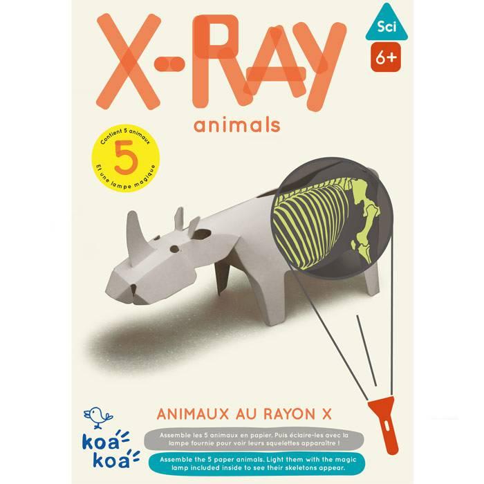 Animaux au rayon X - Koa Koa