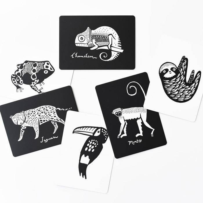 cartes-images-bebe-animaux-tropicaux-wee-gallery