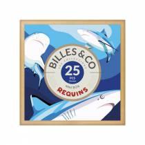 mini-box-billes-requins-billes-and-co