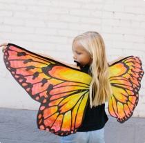ailes-de-papillon-tissu-enfant-seedling