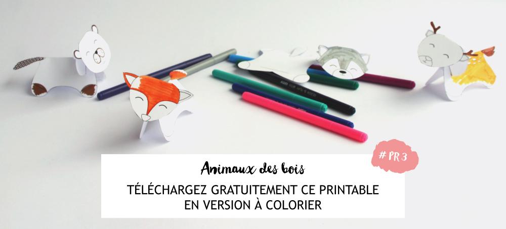 animaux-bois-a-colorier-telechargez-imprimez