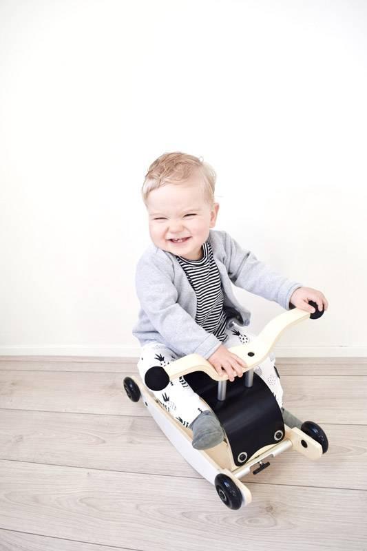 bascule-trotteur-porteur-pour-enfants-des-9-mois