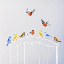 Stickers-chambre-enfant-oiseaux