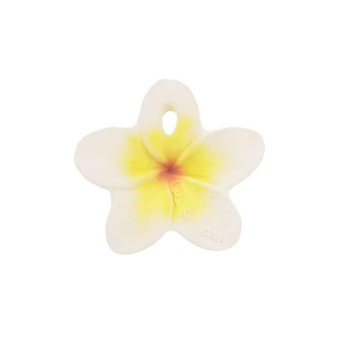 chewy-to-go-fleur-hawaienne-oli-and-carol