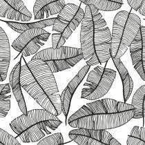 papier-peint-tropical-noir-et-blanc
