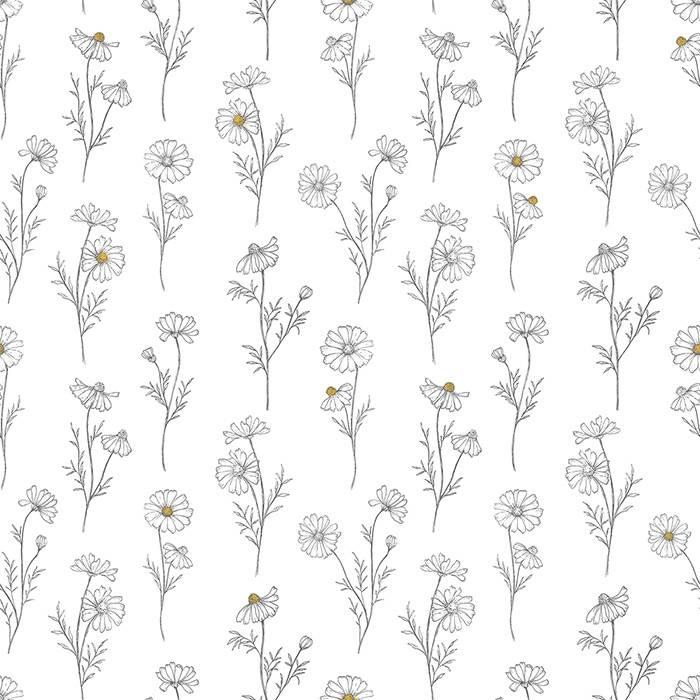 lilipinso-papier-peint-camomilles-fond-blanc