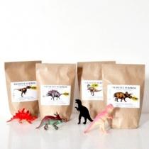 Pochette-anniversaire-surprise-dinosaure