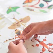 poster-insectes-sticker-poppik