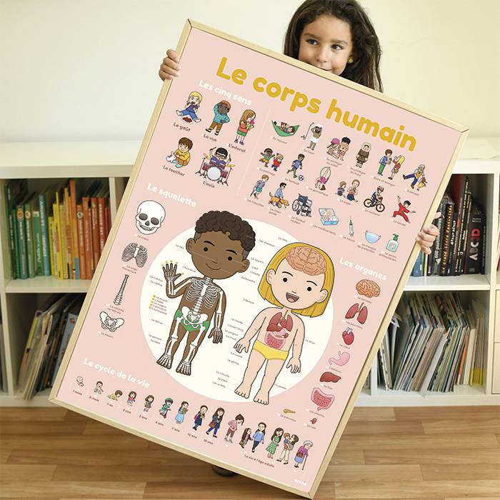 grand-poster-avec-stickers-repositionnables-corps-humain
