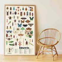 poster-sticker-poppik-insectes