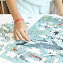 decouvre-les-oceans-avec-le-puzzle-poppik