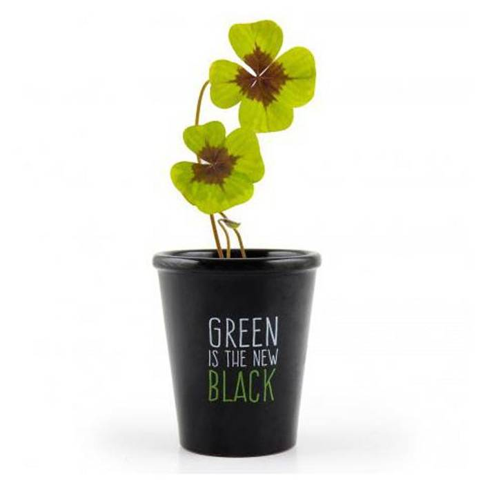 green-is-the-new-black-trefle-4-feuilles