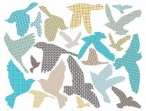 sticker-oiseaux-chambre-enfant-beu