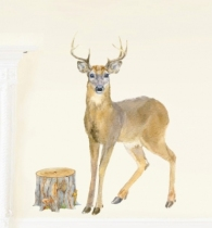 Sticker-cerf-aquarelle-chocovenyl