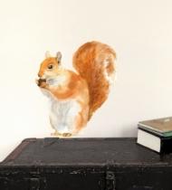 Sticker-mural-ecureuil-roux-mange-noisette