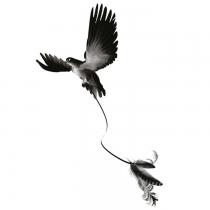 Tatouage ph m re roi lion - Tatouage plume et oiseau ...
