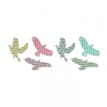dottinghill-oiseau-couleur-livre