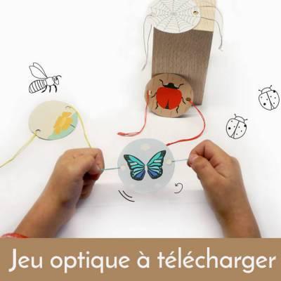 thaumatrope-jeu-optique-telecharger