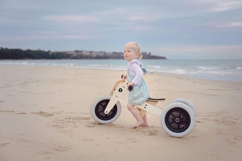 draisienne-et-tricycle-design-pingouin